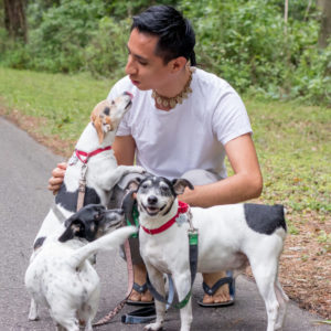Dog Walking | Gainesville Pet Sitting
