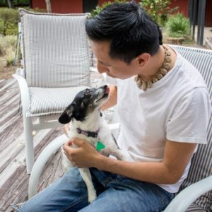 Pet Sitting   Gainesville Pet Sitting